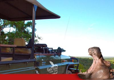 Raptor Retreat adventure Kruger Game drive