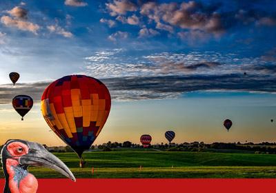 Raptor Retreat adventure - hot air balloon