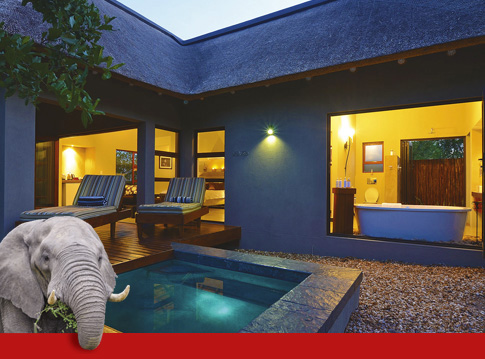 Raptor Retreat Elephant Lodge